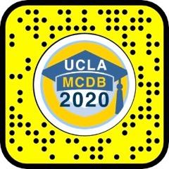 MCDB class of 2020 snap lens